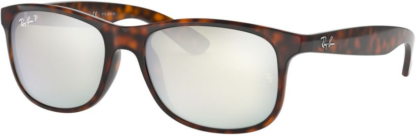 Ray-Ban Andy RB4202-710/Y4