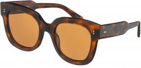Chimi Eyewear #08 Tortoise/Gradient Brown