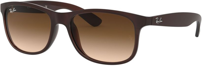 Ray-Ban Andy RB4202-607313